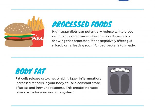 6 Things That Affect Your Immune System Performance [Infographic]